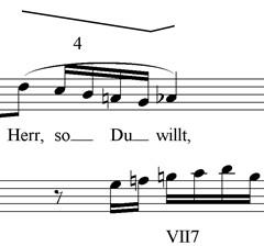 herr-6