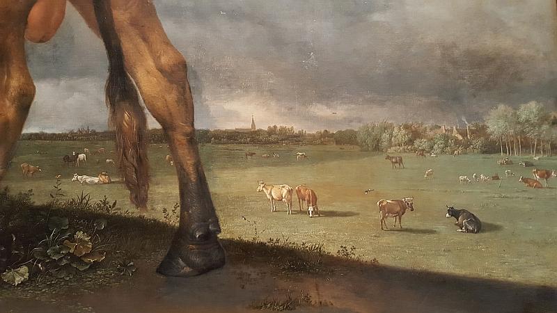 stier-landschap