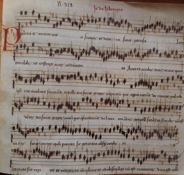 Lymburgia muziek